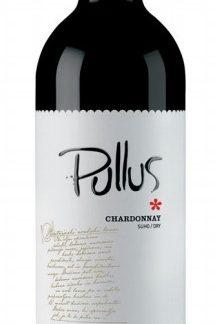Chardonnay Pullus